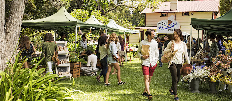 Enjoy the local harvest in Paihia