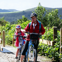 Okaihau is a great place to access the Twin Coast Cycle Trail