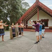 Discover our rich Maori culture.