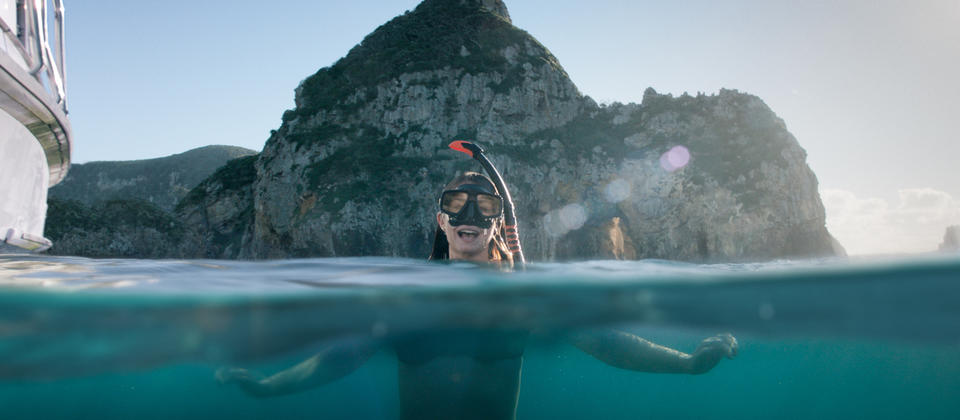 Snorkelling at Poor Knights Islands