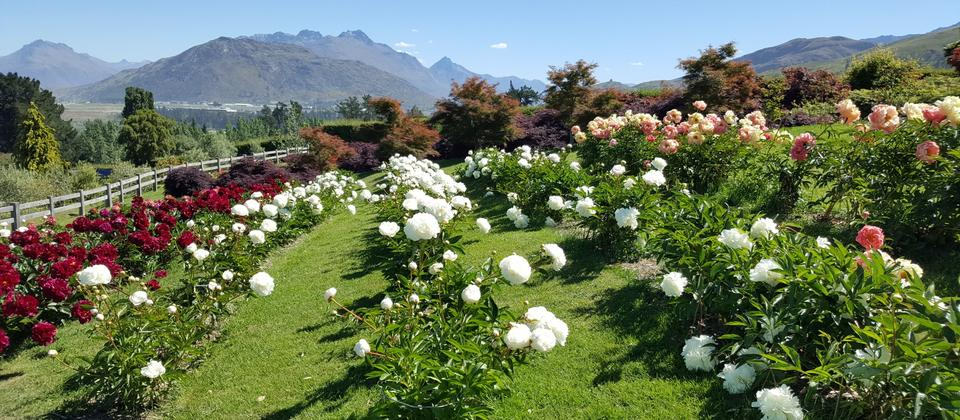 chantecler-farmhouse-gardens-queenstown.jpg