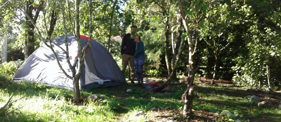 Orchard camping