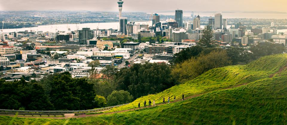 View across Auckland on a Tamaki Hikoi experience