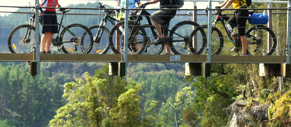 Suspension bridge on the cycle trail near Kumara