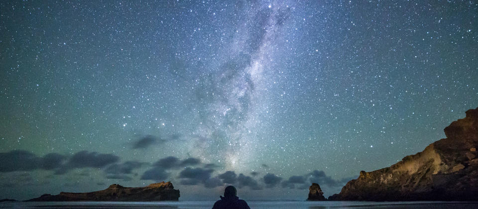 Stargazing at Castlepoint in the Wairarapa