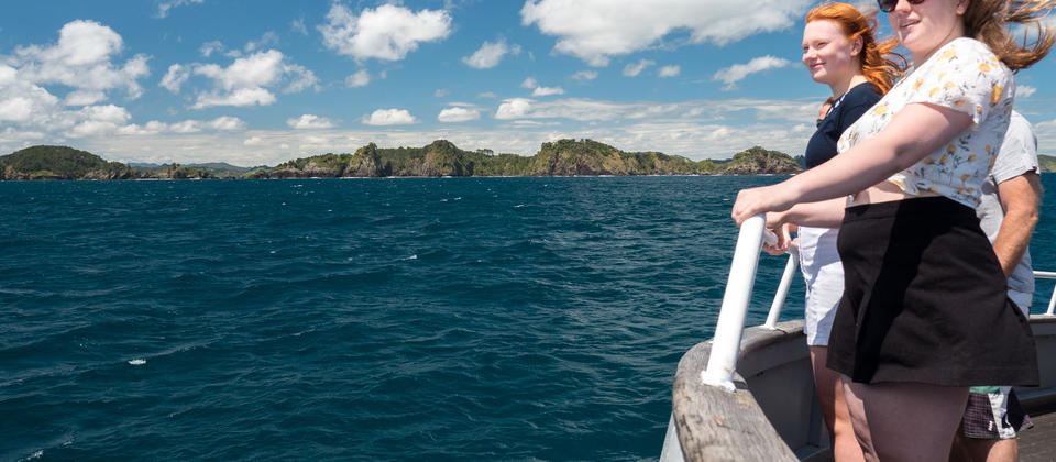 Things to do Bay of Islands.jpg