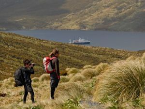 Visiting the Subantarctic Islands