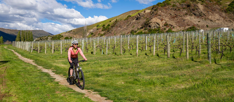 Biking through the vineyards at Gibbston Valley