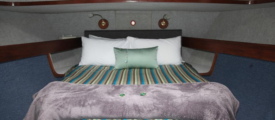 Master Suite Cabin - Doubtful Sound Overnight Cruises Southern Secret