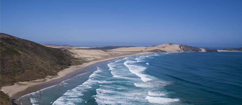 Cape Reinga - Mathew Waters.jpg