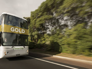 InterCity GOLD bus