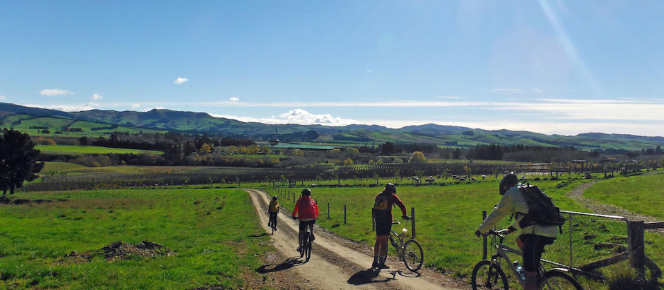 Cycling the Waipara Vineyard Trail