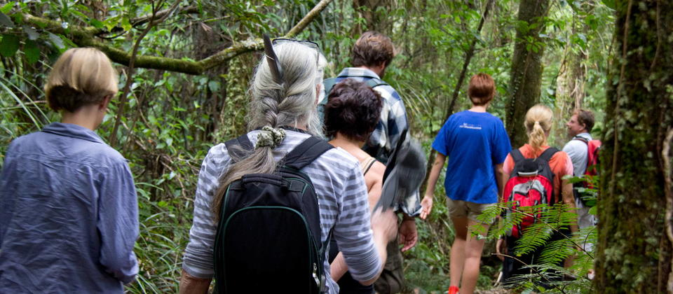 Adventure Puketi Bay of Islands