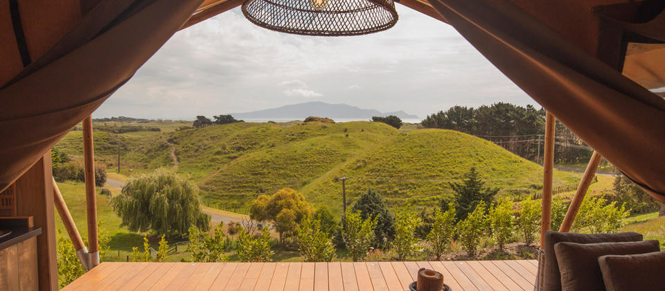 te-hapua-coastal-canopy-camping-looking-out.jpg