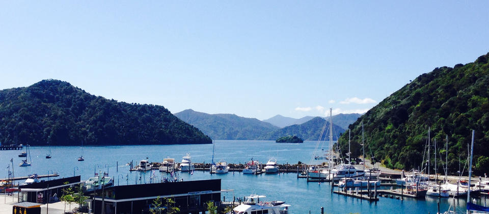 CPG - Picton Yacht Club -Harbour View.jpg