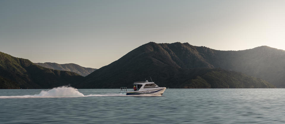 Cougar Line Queen Charlotte Sound cruise MH.jpg