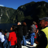 Wilderness cruise in Doubtful Sound