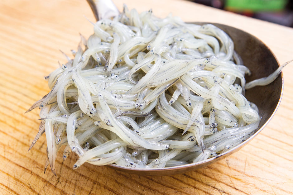 Avoid eating whitebait in New Zealand - four out of five whitebait species are endangered.