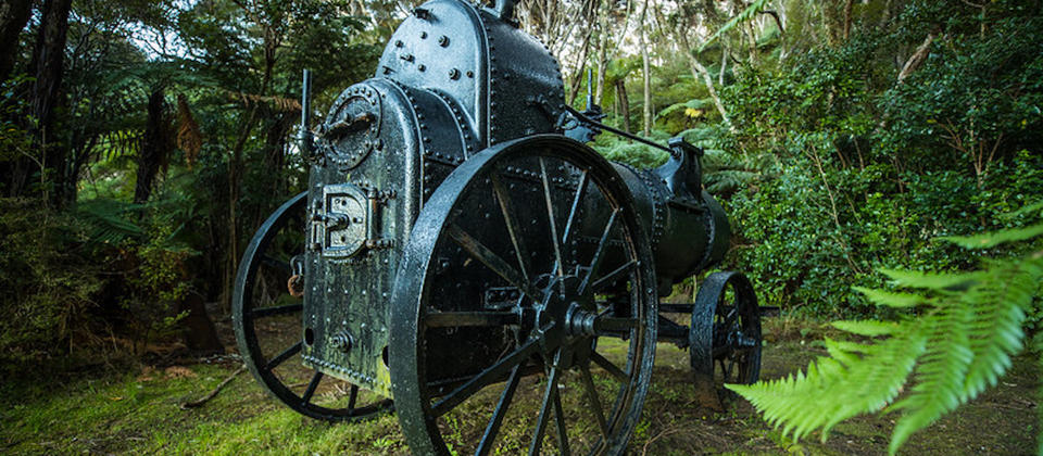 Discover the site of the Kauri Timber Company sawmill (1909 -14) including a steam traction engine, cast iron chimney stack, concrete foundations and stone walls.