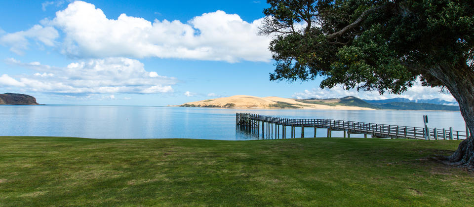 Hokianga Harbour, view from your accommodation
