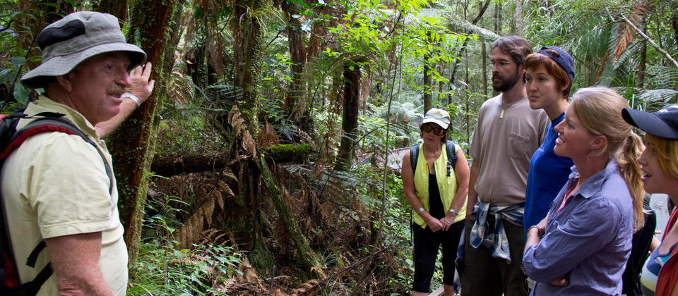 Adventure Puketi - a wonderful way to learn more of the flora, fauna and history of the giant Kauri and their Rainforest surrounds.  Bay of Islands.