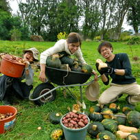 Combine work and fun when you volunteer with WWOOF