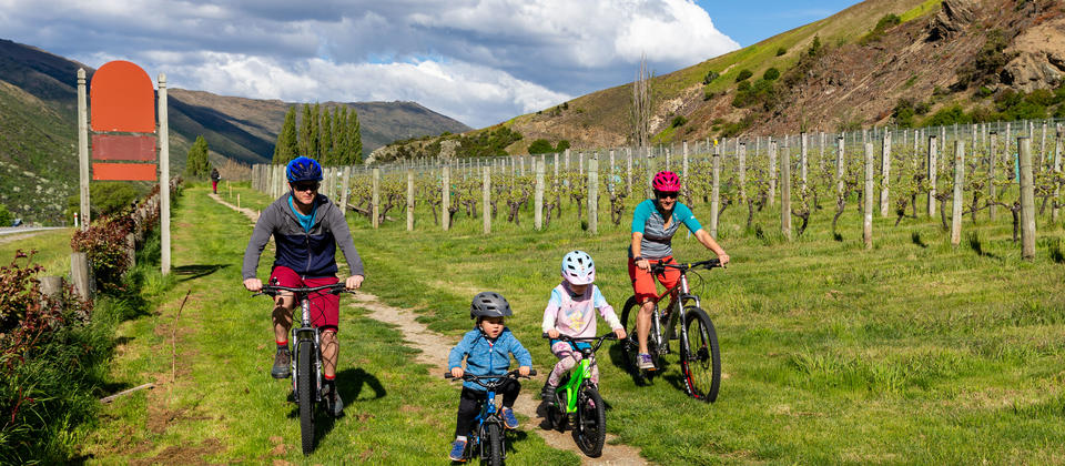 Wine Trail Gibbston Valley biking.jpg