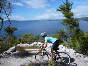 Waihaha to Waihora on the Great Lake Trail
