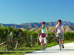 Cycling between vineyards