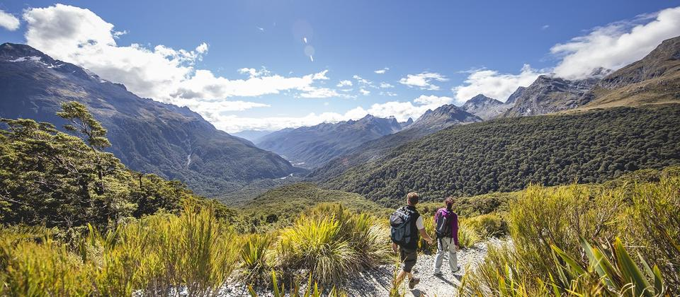 Routeburn Track, Key Summit