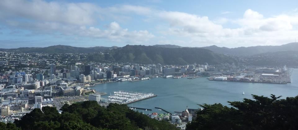 Wellington City from Mount Victoria