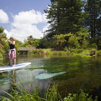 Paddle Boarding Hamurana Springs