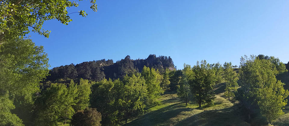 Photo of Tinui Pinnacles as seen from Poplar Cottage.