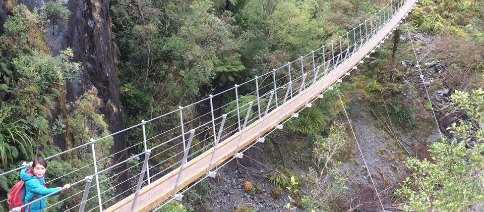 Swing bridge on the Roberts Point Track, Franz Josef Glacier Valley NZ