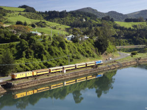 All aboard for a seaside scenic rail trip! The Seasider is a great way to explore Otago's coast.
