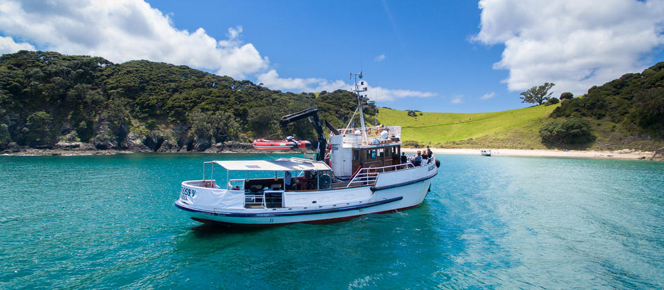 Best things to do Bay of Islands
