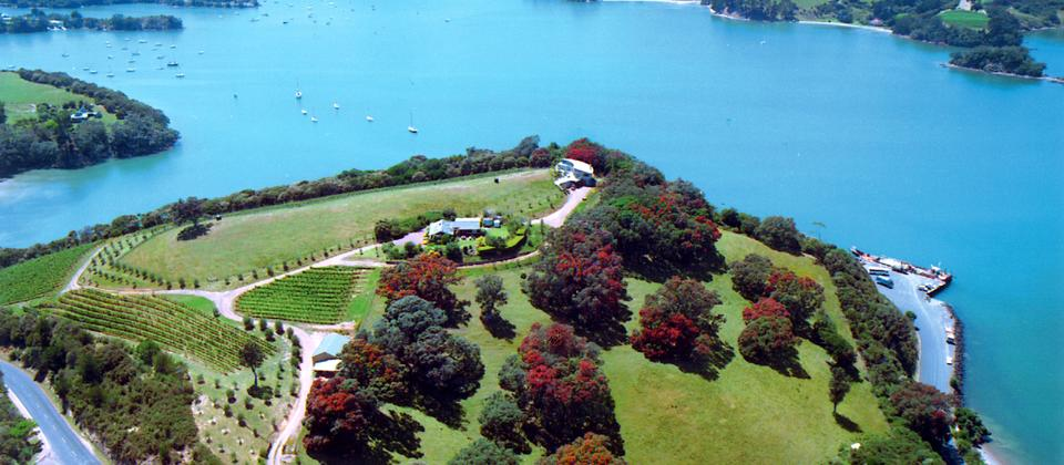 Kennedy Point Vineyard and Guesthouse