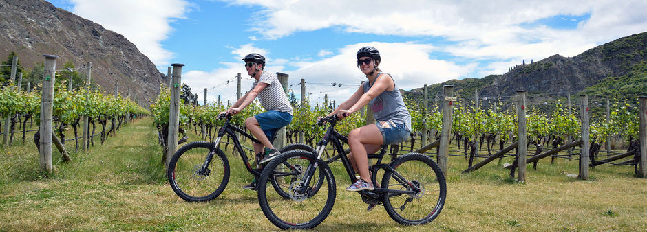 The Gibbston Valley Bike Centre offers direct access to the Gibbston River Trail and nearby wineries.