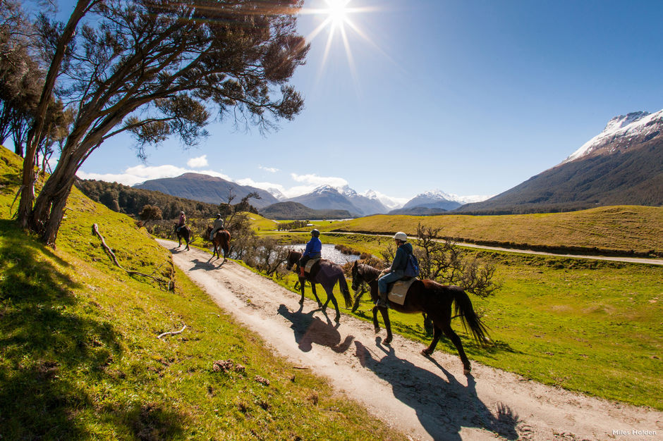 Step back in time on a horse trek through the exceptional landscapes surrounding Glenorchy.
