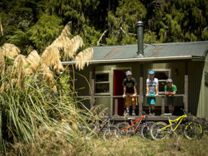 Moerangi Mountain Biking Track