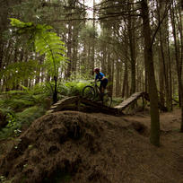 It's all about fun - listed out for the hoots and hollers of fellow riders through the trees.