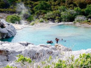 Te Puia Hot Pools