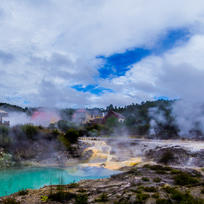 Steam vents dot Rotorua's thermal parks, reminding you of the forces at play here.
