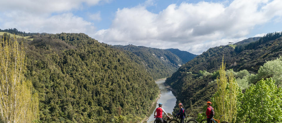 Take in epic views on the Mountains to Sea Cycle Trail