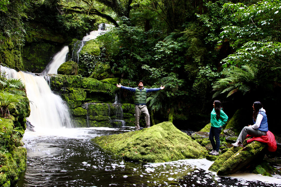 McClean Falls surrounded by lush rainforest in the Catlins