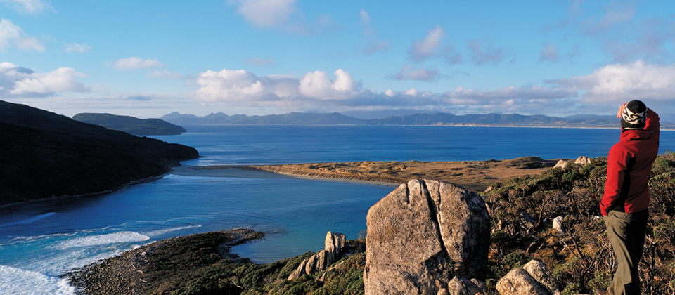 The Rakiura Track on Stewart Island is one of New Zealand's Great Walks.