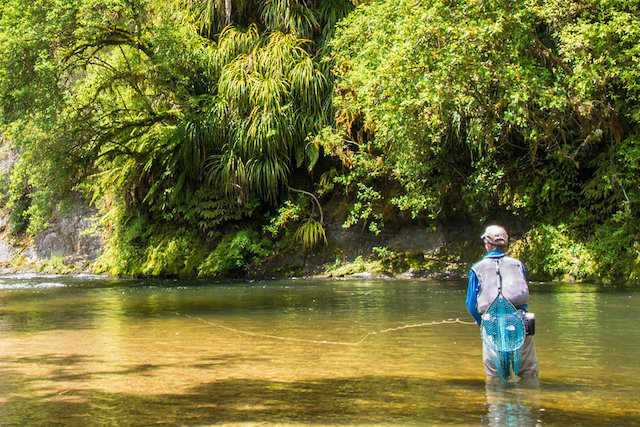 North Island Fly Fishing - Trout Fishing | Tourism New Zealand