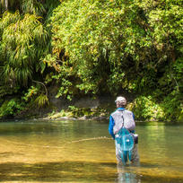 Awakino River in Taranaki is a favourite with locals. Enjoy mind-clearing tranquility.