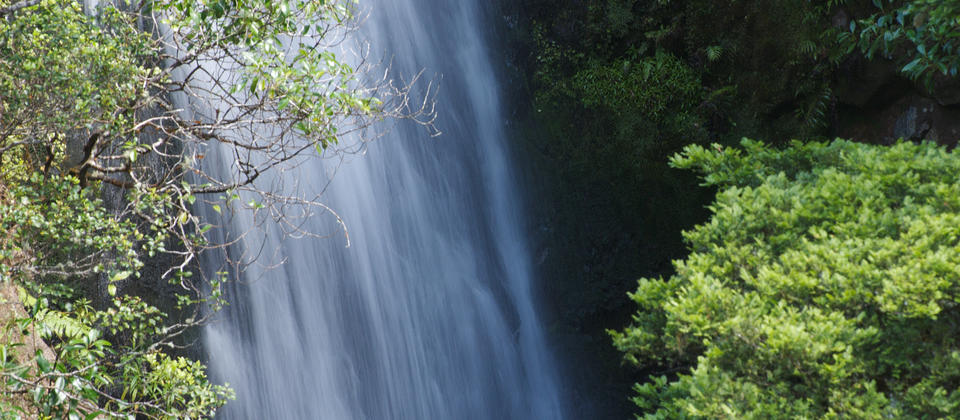 Take the Waterfall Track for this beautiful view of the Wentworth Falls.
