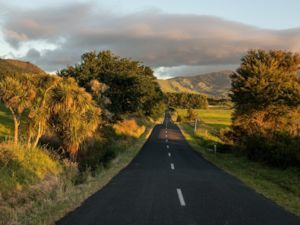 Driving from Thames to Ta Aroha